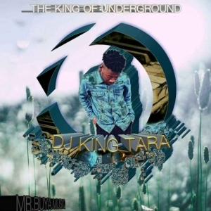 Dj King Tara - Public Drinking (Underground MusiQ)